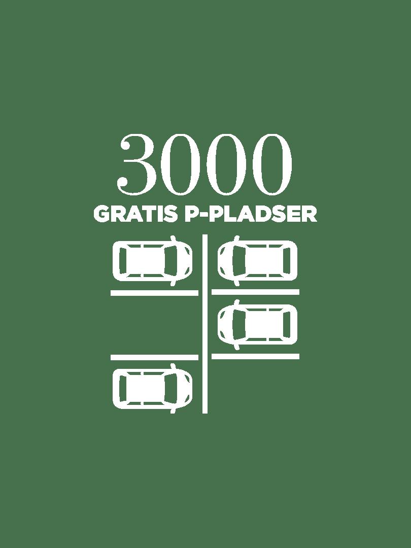 parkeringspladser 2018